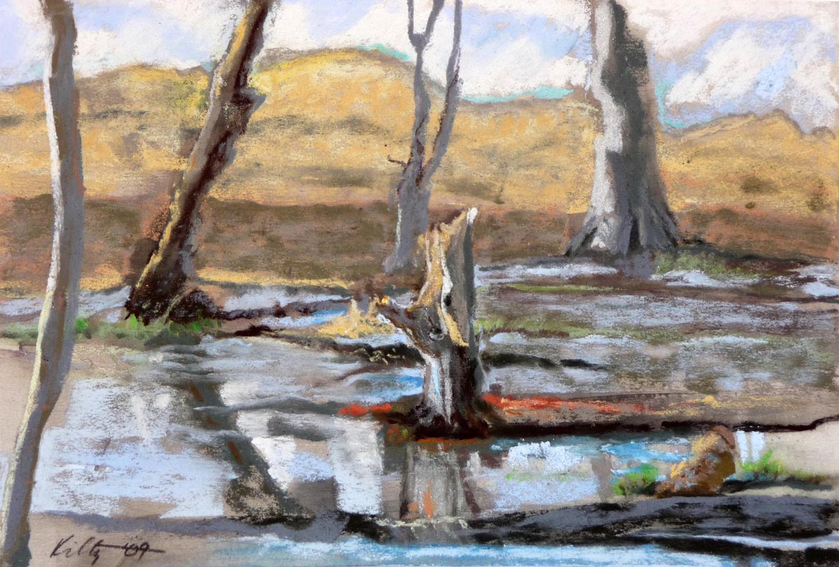 Michigan Marsh | Bobbi Kilty | Fine Artist