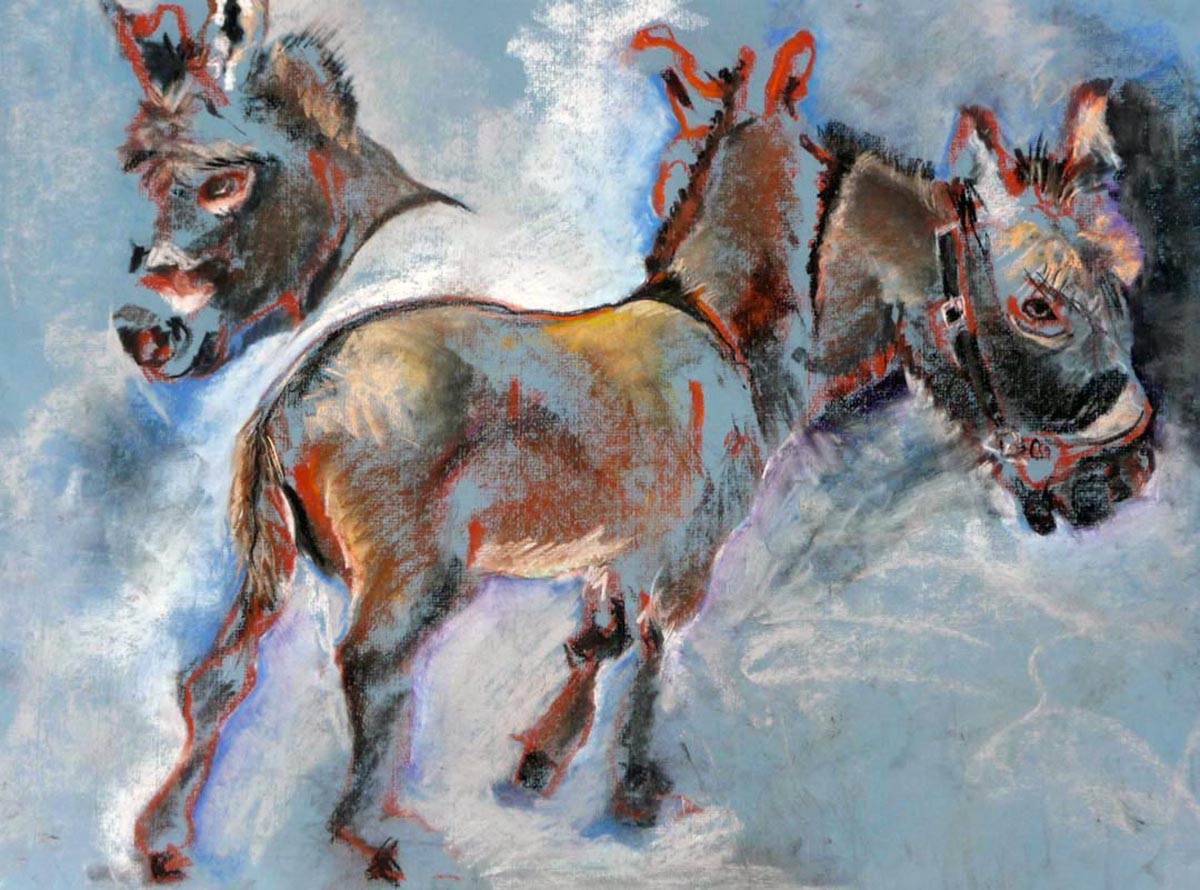 Mini Donkey | Bobbi Kilty | Fine Artist