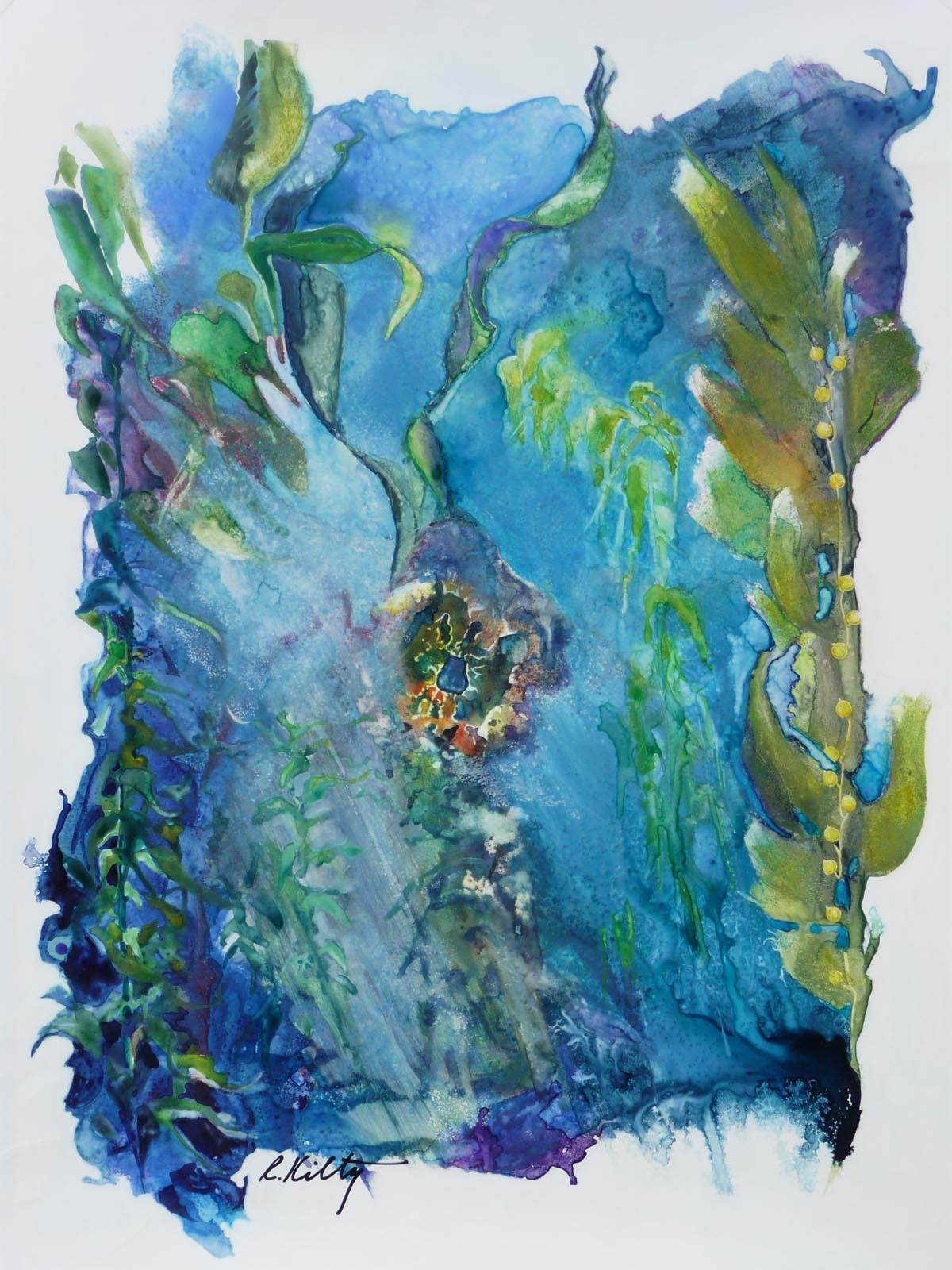Kelp Forest | Bobbi Kilty | Fine Artist
