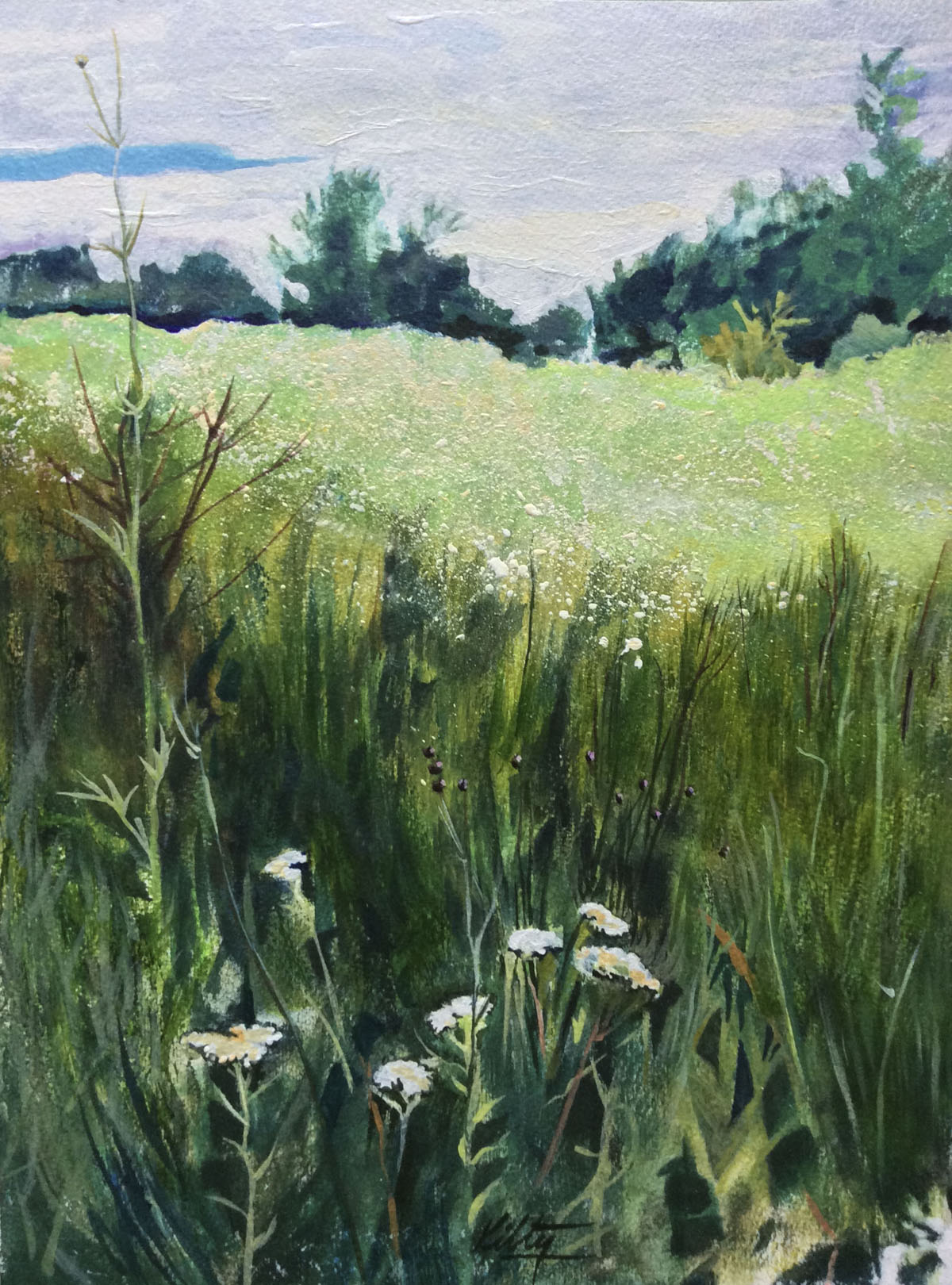 Morning Meadow | Bobbi Kilty | Fine Artist