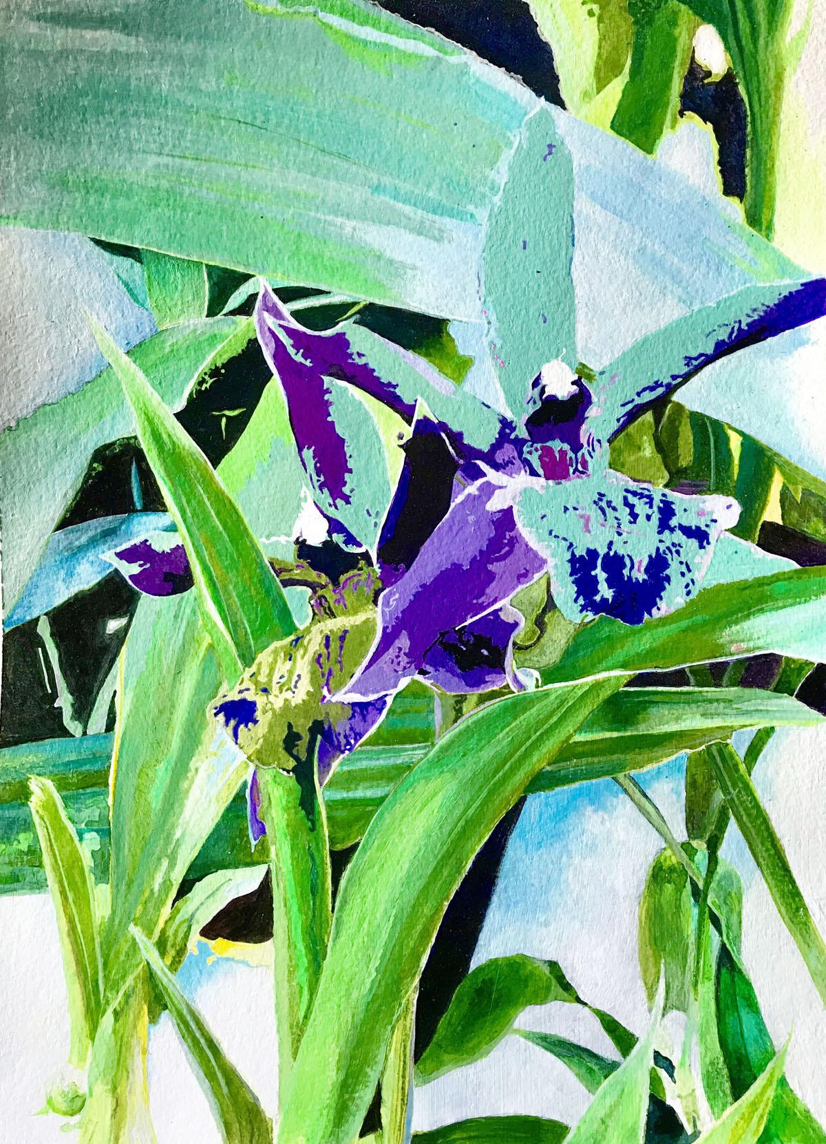 Zygopetalum | Bobbi Kilty | Fine Artist